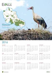 kalendarz-2016-a2